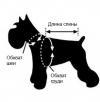 Как измерить собачку