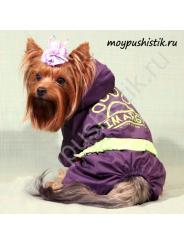 """Дождевик """"Лапка"""" фиолетовый"""