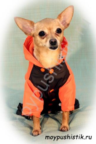 """Дождевик """"Favorite dogs"""" коричнево-оранжевый"""