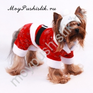 Новогодний комбинезон 'Дед Мороз' красный