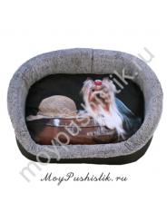 Лежанка Дизайн №3 с собакой ЛД-3 Йорк